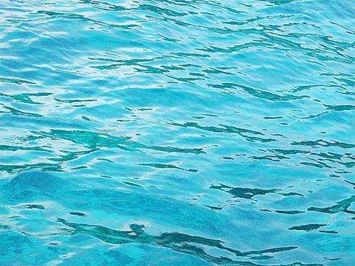 Nguồn nước ô nhiễm 2
